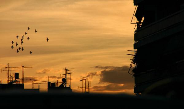 Photo of Αρσενικό στην ατμόσφαιρα του λεκανοπεδίου Αττικής!