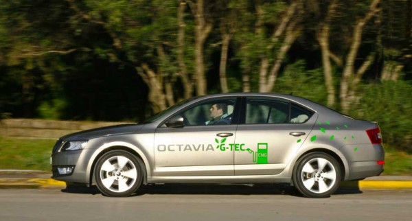 Skoda Octavia G-TEC caroto test drive 2015 (2)