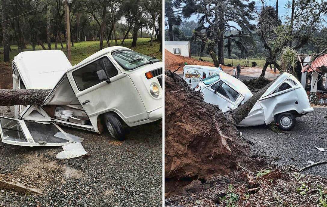 Photo of Φορτηγάκι VW αντέχει ακόμη και σε πτώση δέντρου [vid]