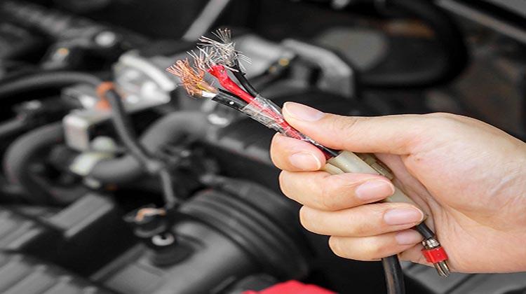Photo of Τα τρωκτικά αγαπούν και τα καλώδια των αυτοκινήτων!