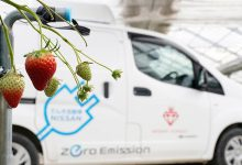 Photo of Πως η Nissan συμβάλλει στην βελτίωση της καλλιέργειας φράουλας;