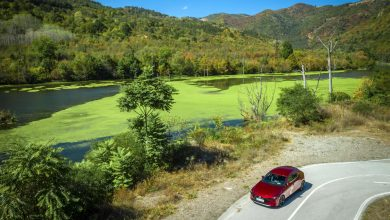 Photo of Mazda: Το μέλλον ίσως να ανήκει σε βιοκαύσιμα από φύκια!