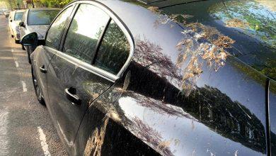 Photo of Τεχνητές κουτσουλιές προστατεύουν το χρώμα του αυτοκινήτου σας!